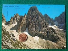 CLUB ALPINO ITALIANO Rifugioforcella Al Sassolungo Con Timbro - Alpinismo