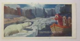 Kaufmannsbilder, Schokolade Gartmann, Serie 260, Bild 4. Album 9.Eisbär ♥(39450) - Chromos