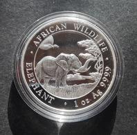 Somalia, Elephant 1 Oz 2019 Silver 999 Pure - 1 Oncia Argento Puro Bullion Elefante - Somalia