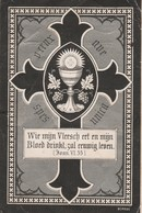 Anna Theresia Delanghe-cuerne 1820-1890-versterkt En Kreuk - Images Religieuses