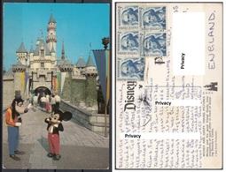 Disney : Topolino E Pippo Mickey Goofy Castello Bella Addormentata - Disneyland