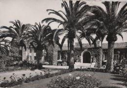 Frankreich - Antibes - Cap - 1959 - Antibes
