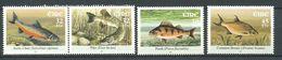 248 IRLANDE 2001 - Yvert 1377/80 - Poisson - Neuf ** (MNH) Sans Trace De Charniere - 1949-... République D'Irlande