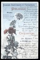 """ROMA - 1901 - RICORDO DELLA ESPOSIZIONE DEI CRISANTEMI - STABILIMENTO FIORICOLTURE """"PALUSSE"""" - Fiori"""