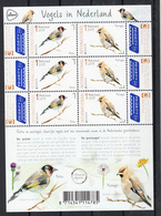 Nederland 2019 Nvph Nr ??, Mi Nr ??, Europa, Vogels In Nederland , Putter + Pestvogel, Putter + Plague Bird - Ongebruikt