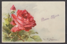 93521/ FLEURS, Illustrateur Catarina KLEIN, Rose - Bloemen