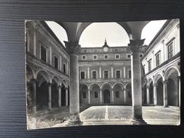 Urbino - Palazzo Ducale - Fotografica - Urbino