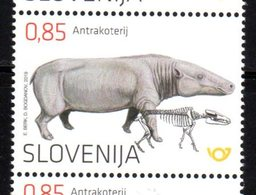 SLOVENIA , 2019, MNH, PREHISTORIC FAUNA, ANTHRACOTHERE, 1v - Prehistorics