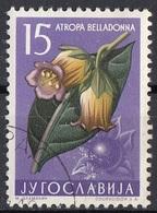 Jugoslavia 1957 Sc. 470 Fiori Flowers Atropa Belladonna Pianta Medicinale Used - Piante Medicinali