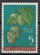 Jugoslavia 1955 Sc. 424 Fiori Flowers Luppolo - Humulus Lupulus - Pianta Medicinale Used - Piante Medicinali
