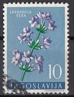 Jugoslavia 1959 Sc. 538 Fiori Flowers Lavandula Vera - Spico - Pianta Medicinale Used Yugoslavia - Piante Medicinali