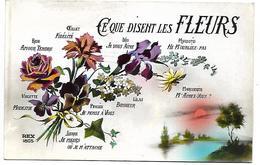 CE QUE DISENT LES FLEURS - Fleurs