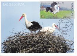 2019 , Moldova  Moldavie  Moldawien  Moldau  Europa Birds  Fauna , 2 V. , MNH - 2019
