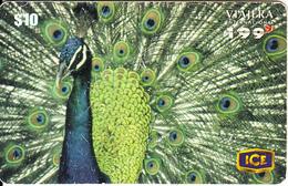 COSTA RICA - Peacock, ICEtel Prepaid Card $10, Tirage 50000, 11/99, Used - Perroquets