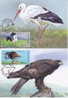 2019 , Moldova  Moldavie  Moldawien  Moldau  Europa Birds  Fauna , 2 Maxicards - 2019