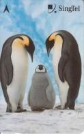 SINGAPORE(GPT) - Pinguins, CN : 236SIGC2K, Used - Pingouins & Manchots
