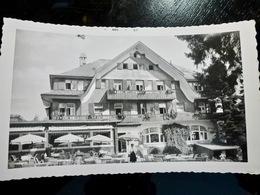 PHOTO ORIGINALE _ VINTAGE SNAPSHOT : AUBERGE SCHWARTZWALD à TITISEE _ FORET NOIRE _ ALLEMAGNE _ 1957 - Lieux