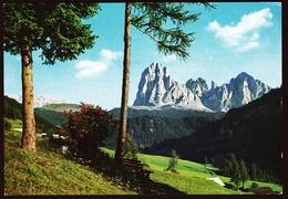 Dolomiten  -  Gruppo Sassolungo  -  Langkofelgruppe  -  Ansichtskarte Ca.1965    (10611) - Italie