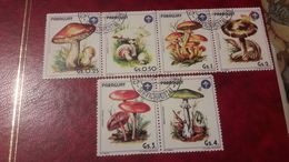 1985 Funghi - Paraguay