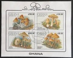 Ghana 1990 Mushrooms Min. Sheet Of Four IMPERF>USED - Ghana (1957-...)