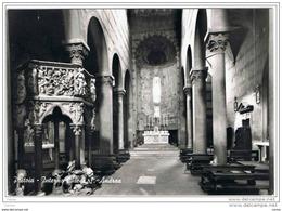 PISTOIA:    INTERNO  CHIESA  S. ANDREA  -  FOTO  -  FG - Chiese E Conventi