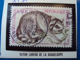 """1970-79-timbre Oblitéré N° 1754    """"  Raton Laveur De La Guadeloupe     """"       0.30 - France"""