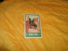 CARTE POSTALE ANCIENNE NON CIRCULEE DATE ?../ ITALIE. PADOVA.../ ENIT.. - Autres