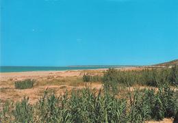 Cadiz Ak140479 - Spanien