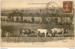 WW 03 AUVERGNE. Le Labourage à Chavroches 1922 Attelage De Boeufs - France