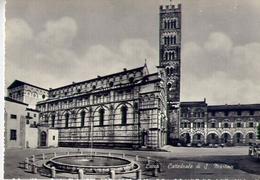 Lucca - Cattedrale Di S.martino - Formato Grande Non Viaggiata – E 12 - Lucca