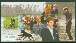Falkland Is: 2000   Prince William's 18th Birthday   M/S    MNH - Falkland Islands