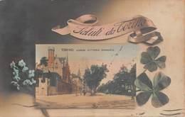 """1018  """"TORINO - CORSO VITTORIO EMANUELE II"""" ANIMATA, TRAMWAY.  CART   SPED 1914 - Italie"""