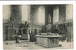 CPA - Carte Postale -Belgique- Gent - Ruines De L'Abbaye St Bavon-VM2421 - Gent