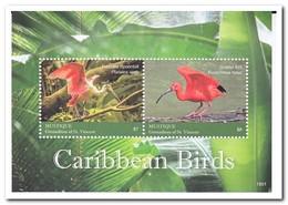 Mustique 2018, Postfris MNH, Birds - St.-Vincent En De Grenadines
