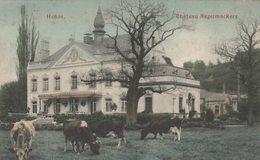 Henne - Chaudfontaine - Château Nagelmackers - Vue Colorisée - 2 Scans - Chaudfontaine