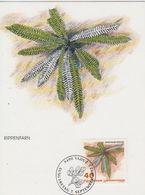 Liechtenstein 1992 Ferns / Farne  40Rp  Rippenfarn 1v Maxicard (42434) - Maximumkaarten