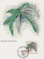Liechtenstein 1992 Ferns / Farne  50Rp  Brauner Streifenfarn 1v Maxicard (42434A) - Maximumkaarten