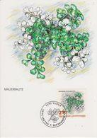 Liechtenstein 1992 Ferns / Farne  2.50Fr  Mauerraute1v Maxicard (42434B) - Maximumkaarten