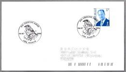 ALCAUDON REAL - GREAT GREY SHRIKE - PIE-GRIECHE GRISE. Namur 1998 - Obliteraciones & Sellados Mecánicos (Publicitarios)