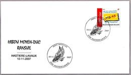 BUHO CHICO - LONG-EARED OWL - HIBOU MOYEN-DUC - Asio Otus. Hastieie-Lavaux 2007 - Búhos, Lechuza