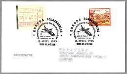 Europa Schrankenlos - AVION MIG 21 FISHBED. St. Polten 1995 - Aviones