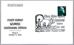 OLNEY ALBINO SQUIRREL - ARDILLA. Olney IL 2002 - Sellos