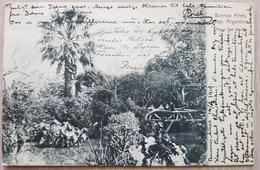 Argentina Buenos Aires 1910 - Argentina