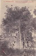 Asie - Thaïlande - Angkor-Wat - Ruines D'un Templion Dédié à Prah-Pithu - Thaïlande