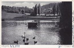 AK Bielefeld - Adolf Hitlerpark - Ca. 1940 (40542) - Bielefeld