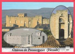 CPM*34* Château De PUISSERGUIER - Cité Cathare _ SUP *2 SCANS - Altri Comuni
