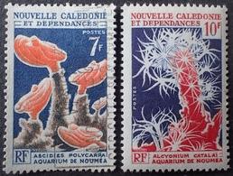 FD/3100 - 1964 - NOUVELLE CALEDONIE - N°322 à 323 NEUF**(1)/☉(1) - Neufs