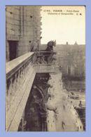 CPA - Paris (75) - 1762 . Notre-Dame .- Chimères Et Gargouilles .- CM - Notre Dame De Paris