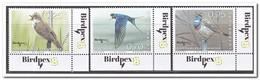 Luxemburg 2018, Postfris MNH, Birds - Luxemburg
