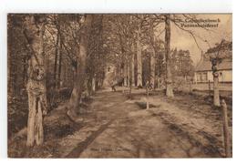 Kapellen 10211. Cappellenbosch Pannenhuisdreef  Photo Hoelen. Cappellen 1929 - Kapellen